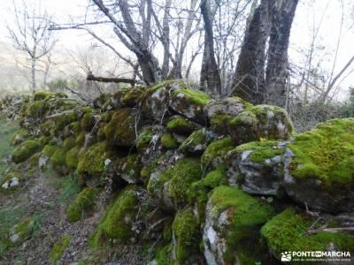 Ruta de los Castaños, Rozas de Puerto Real;excursiones alrededores madrid grupos para salir por mad